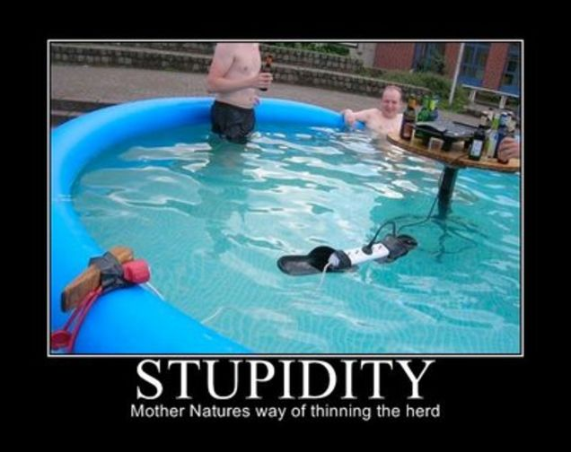 Stupidity-Mother-Natures-Way-Of-Thinning-The-Herd-Funny-Picture